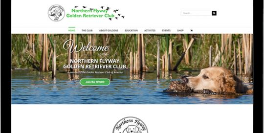 Northern Flyway Golden Retriever Club