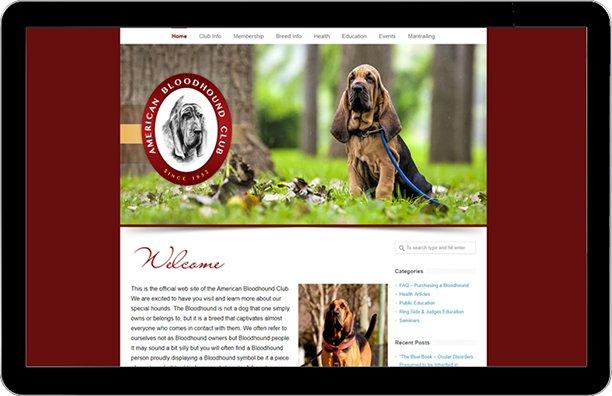 American Bloodhound Club