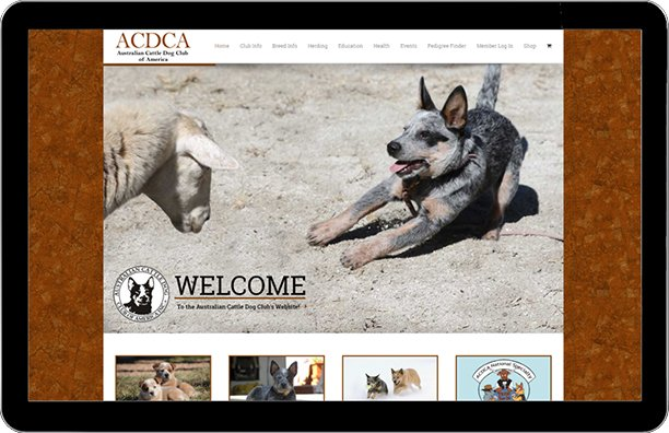 Australian Cattle Dog Club of America