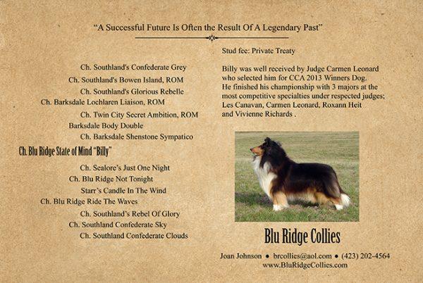 Billy Stud Card
