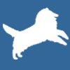 Collie Health Foundation avatar.