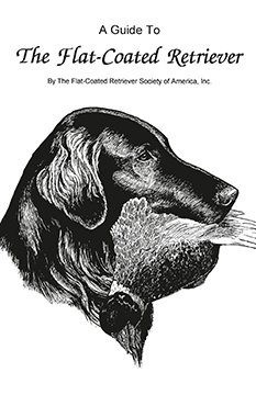 Flat-Coated Retriever Illustrated Breed Standard