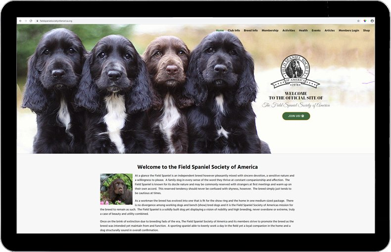 Field Spaniel Society of America