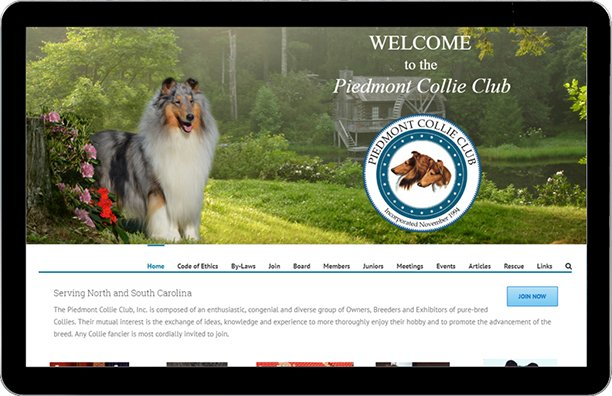 Piedmont Collie Club