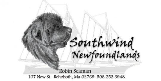Southwind Newfoundlands