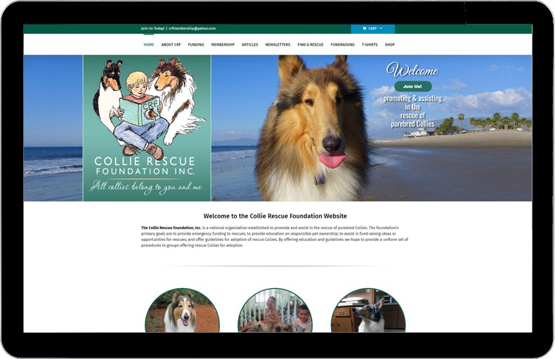 Collie Rescue Foundation