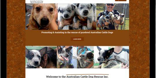 Australian Cattle Dog Rescue Inc