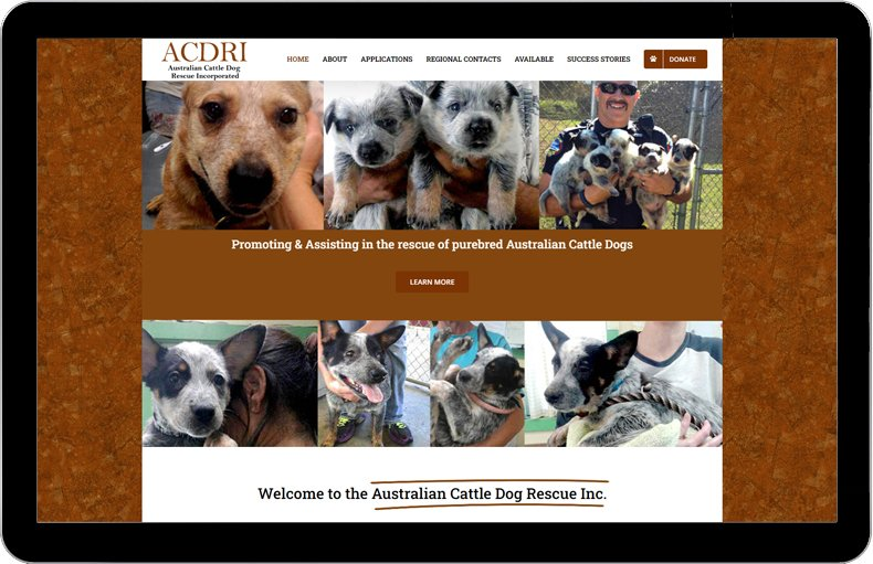 Australian Cattle Dog Rescue Inc