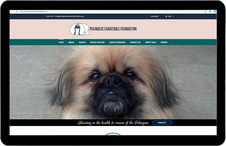 Pekingese Charitable Foundation