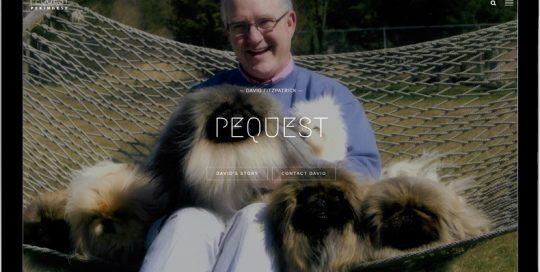 Pequest Pekingese